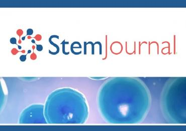 StemJournal, Stem cell research, StemHub
